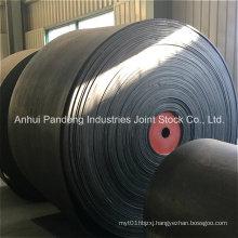 Conveyor Belt/Cold-Resistant Conveyor Belt/Ep Conveyor Belt