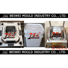 Fashionable Plastic Injection Food Bucket Mould