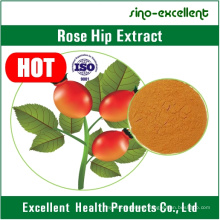 Rose Hip Extract Powder for Knee or Hip Osteoarthritis