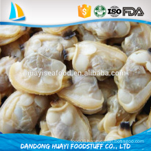 purchase in advance best quality best fresh clam meat
