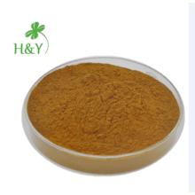 Poudre d'extrait de salsepareille 100% naturelle