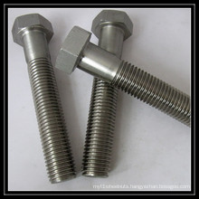 Stainless Steel Hex Screw