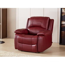 Electric Recliner Sofa USA L&P Mechanism Sofa Down Sofa (C853#)