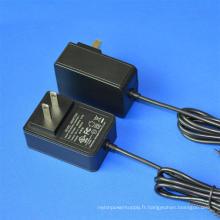 Adaptateur d'alimentation 5V3000mA 6V3000mA 7.5V3000mA 9V2600mA 10V2400mA 24V1000mA