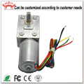 Brushless Motor With Worm Gearbox