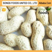 Alibaba Best Peanuts