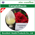 Materia prima de 7-Ethylcamptothecin anti cancer