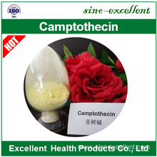 Factory directly for Anti Cancer 10-hydroxycamptothecin export to Barbados Manufacturer