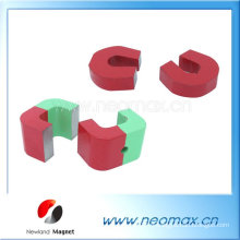 Education Alnico Magnets