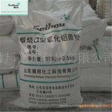 Alumine à faible teneur en sodium à faible teneur en mousse 1000