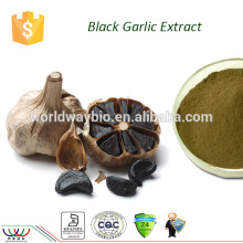 Natural liver protecter Kosher HACCP FDA cGMP certified black garlic extract amino acid powder