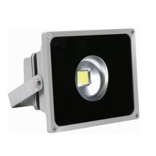 ES-50W LED Garden Floodlights