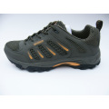Ventilate Sports Shoes for Summer