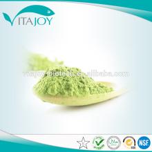 Organic Stevia Leaf Straight Powder en stock con entrega rápida