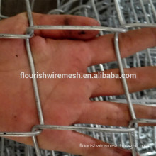 Diamond mesh fence/Galvanized chain link fence/PVC coated chain link fence