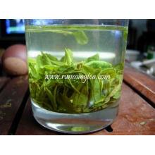 Здоровый зеленый чай для похудения