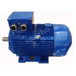 Low-voltage 1000RPM Permanent Magnet Synchronous Motor