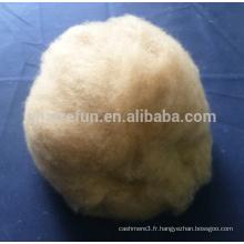 Alashan chameau cheveux naturel brun MC1