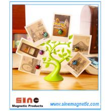 Sine Magnetische Nachricht Posted Decoration Compounds Home Decoration Kleine Geschenk