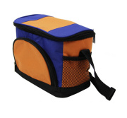 High Quality Insulated Cooler Bag for Picnic