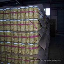 Canned Mushroom Top-Qualität