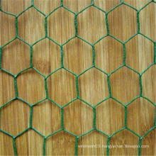 galvanized PVC coated Hexagonal Wire Mesh (Chicken Wire) (ISO9001: 2000)