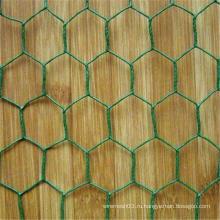 гальванизированная покрынная PVC Шестиугольная сетка (мелкоячеистая сетка) (ИСО9001: 2000)