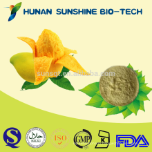 World Best Selling Product No Added Sugar & Pure Natural Mango Powder For Food Additive