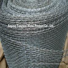 Tela quadrada galvanizada do engranzamento de fio / tela de fio quadrada galvanizada / malha quadrada galvanizada elevada do zinco