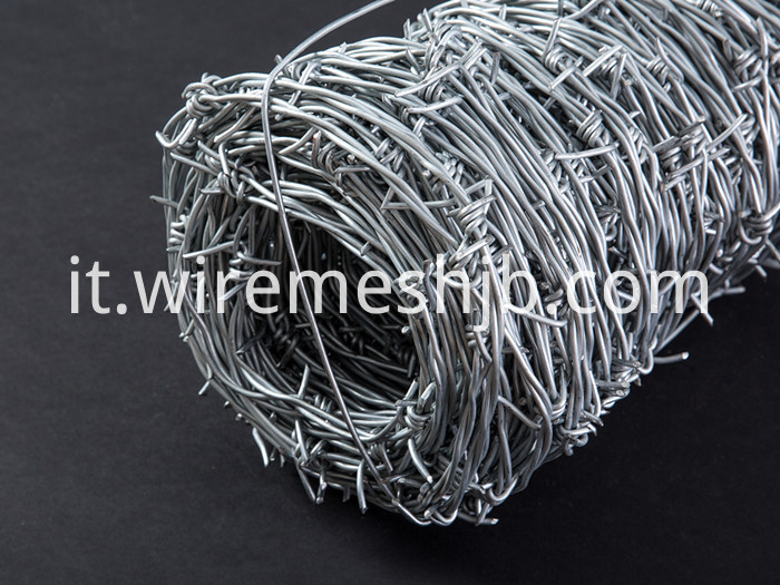 Barbed Wire Double Strand