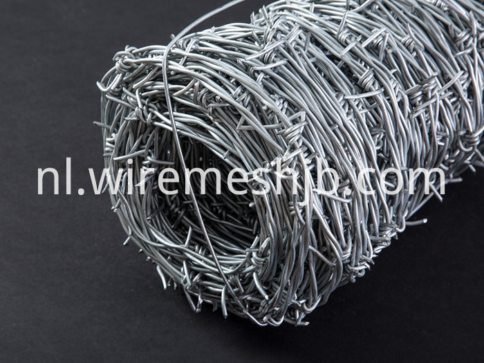 Galvanized Barb Wire