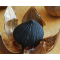 ajo negro solo diente de ajo negro