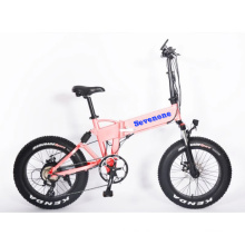 Made-in-Poland 48V 350W Foldable Electric Bicycle with Hidden Battery