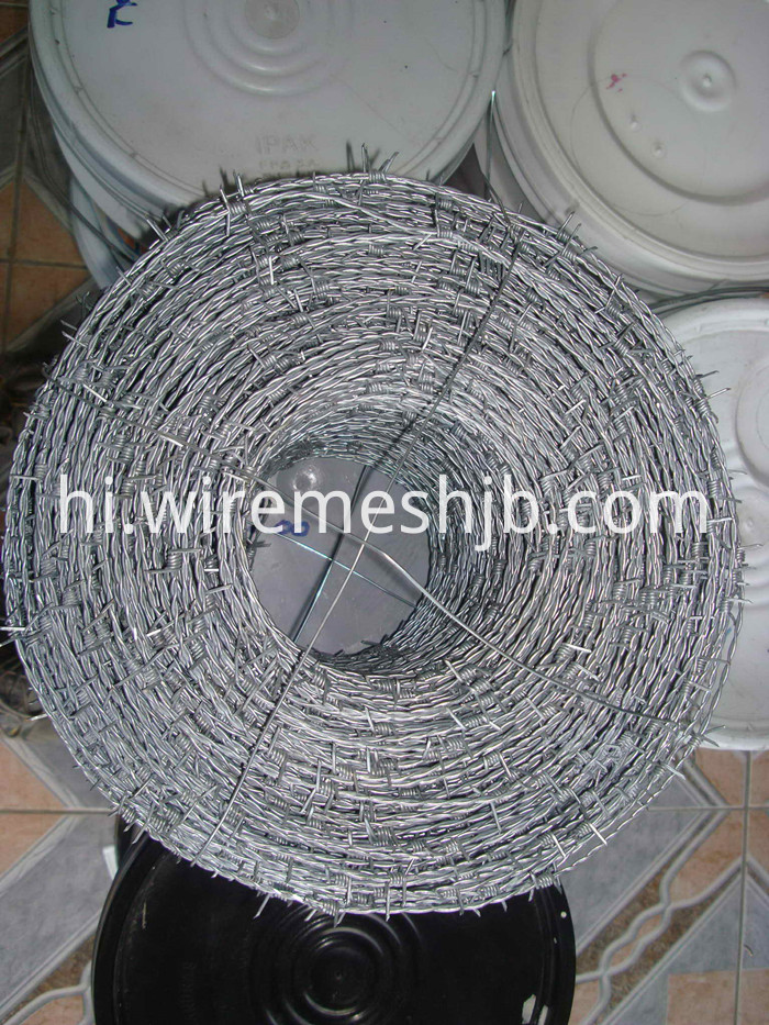 Galvanized Barbed Wire Fencing