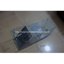 Dikimpal wire mesh mouse sages