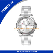 Customized Logo Stainless Steel Wrist Watches with Colorful Strap