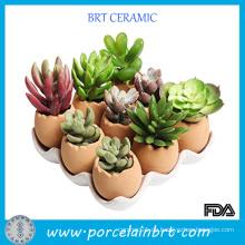 Entzückendes Set Eier Design Garten Pot