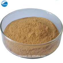 Hot selling factory price bacopa monnieri / bacopa monnieri extract