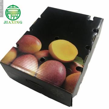 Emballage de boîte ondulée de fruit frais de mangue