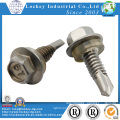 Stainless Steel 316 Hex Head Self Drilling Screw with Rubber Washer