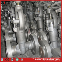 Geschmiedete Stahl-Druckdichtungs-Kugelklappe