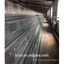 Las 4 capas superiores de la jaula de pollos de engorde enviadas a Sudáfrica