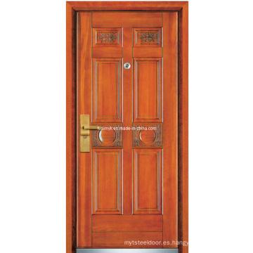 Puertas de acero (FXGM-A106)