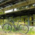 Heißer Verkauf 26 '' BAFANG mittleres Laufwerk billiges elektrisches Fahrrad mit versteckter Batterie, grünem Energieberg e-Fahrrad vom Porzellan