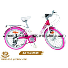 20′′alloy Child Bike 6 Speed Girl Bicycle (AB13N-2055)
