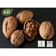 Регенерирующее кожу чистое масло грецкого ореха