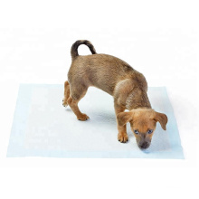 New supreme quality shock mat dog training mat