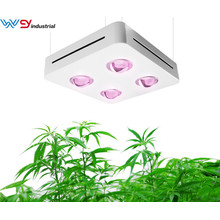 Best Cob LED Grow Light 400W