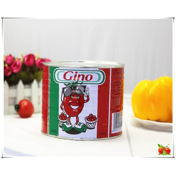 Gino Canned Tomato Paste for Benin West Africa