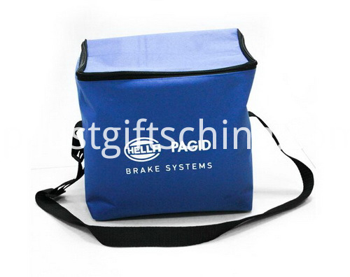 Promotional Non Woven Cooler Bags Zipper Closure - 6 Can